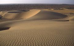 Thar-sivatag (India)