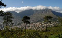 Fok-hegység (Dél-Afrika)
