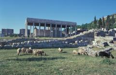 Birkák legelnek Szkander bég síremléke előtt Lezhában