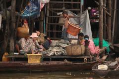 Halpucolás a Tonle Szap tavon