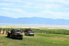 Farm legelővel a Nagy-Sós-tó Antelope-szigetén