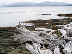 Magellán-szoros (Chile)