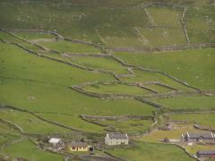 Legeltetés (Írország)