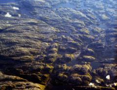 Legyalult hegyvidék (Skandináv-hegység)