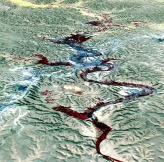 Mzab-völgy (Algéria)