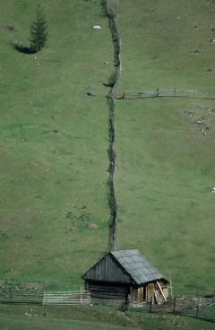 Erdőirtás és legeltetés (Gyimes, Románia)