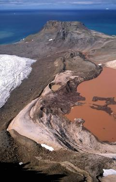 Algás tó (Antarktisz)