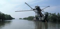 Mederkotrás (Duna-delta)