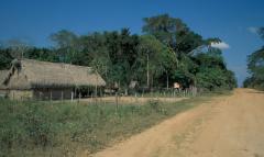 Transzamazóniai út