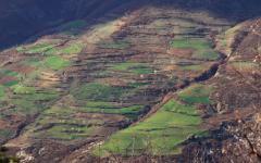 Teraszosítás (Albánia)
