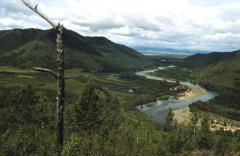 Meánderező folyó a tajgában
