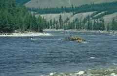 Oka-folyó (Szibéria)