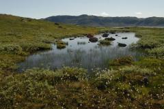 Feltöltődő tó (Norvégia)