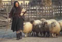 Pásztor (Bihar-hegység, Románia)