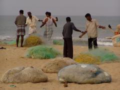 Halászat (India)