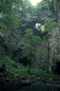 Mészkő (Rakov Skocjan, Szlovénia)