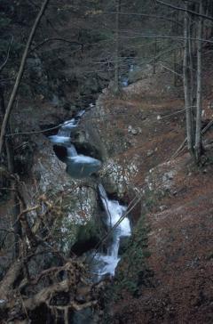 Karsztos patakvölgy (Bihar-hegység, Románia)
