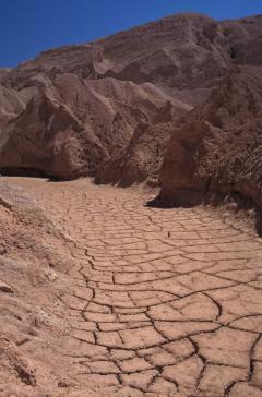Vádi (Atacama-sivatag, Chile)