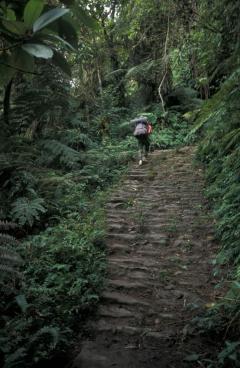 Útépítés, inka ösvény (Bolívia)