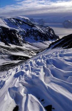 Hőhullámok (Antarktisz)