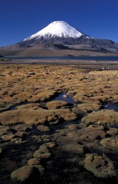 Rétegvulkán (6300 m, Parinacota, Száraz-Andok, Chile)